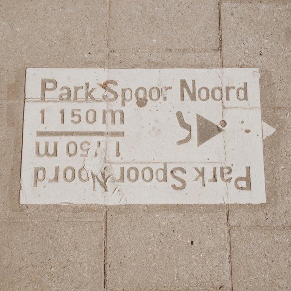 bieganie w Antwerpii