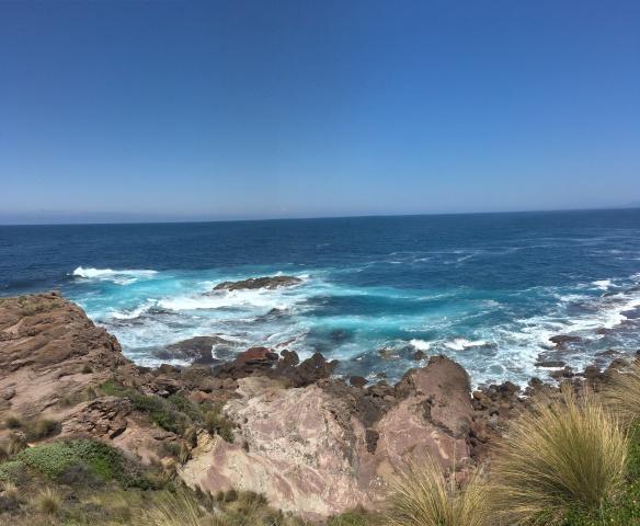 Eden Ocean Nowa Południowa Walia Australia
