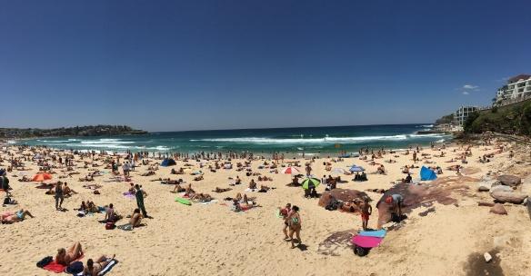 plaża Bondi Sydney